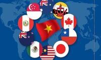 Xuất khẩu của Việt Nam sang một số nước thành viên CPTPP tăng cao