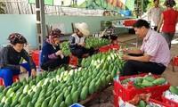 Xuất khẩu dệt may và rau, quả tăng mạnh