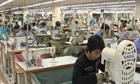 Hiệp định Thương mại tự do Việt Nam – EU khuyến khích đầu tư sản xuất nguyên phụ liệu dệt may