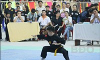 Hơn 1.000 võ sư, võ sinh tham dự Liên hoan quốc tế Võ cổ truyền lần thứ VII - Bình Định 2019