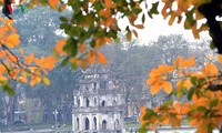 Red orange colour of foliage around Hoan Kiem lake