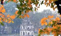 Red orange colour of foliage around Hoan Kiem lake