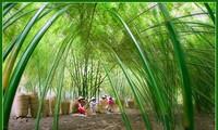 Việt Nam đẹp như tranh vẽ qua các tác phẩm ảnh tại triển lãm Ánh sáng từ tâm
