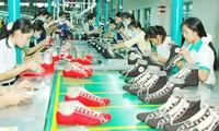 Fuerte crecimiento del intercambio comercial Vietnam- Chile