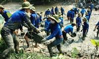 Jóvenes de Bac Ninh en la construcción del nuevo campo