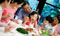 Diversas actividades para saludar el Día Nacional de la Familia de Vietnam