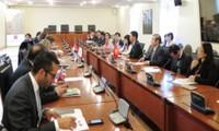 Aumenta exportación vietnamita a Chile gracias al TLC