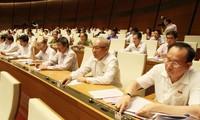 Marcas del noveno pleno del Parlamento vietnamita