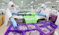 Se consolida conexión empresarial Vietnam - Egipto