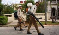 Cuba registra primer caso de zika