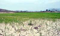 Pobladores del Delta del río Mekong luchan contra el cambio climático