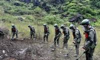 Esfuerzos colosales de Vietnam para descontaminar tierras con bombas y minas