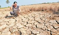 En el Delta del Mekong se esfuerzan por ahorrar agua