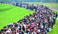 Unión Europea se preocupa por medidas de control en la frontera Austria-Italia