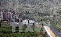 Organización para la Cooperación Islámica convoca reunión urgente sobre escalada en Altos del Golán