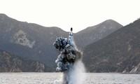 CICA exhorta a Corea del Norte a abandonar su programa nuclear
