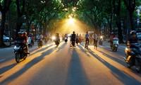 El verano de Hanoi
