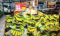 Japón aprecia altamente plátanos importados de Vietnam
