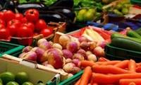 Vietnam y Corea del Sur promueven cooperación en procesamiento de alimentos