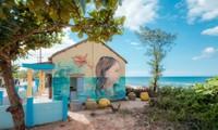 Primera aldea con pintura mural de Vietnam atrae a jóvenes