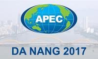 Da Nang confirma el papel de ser ciudad del APEC 2017
