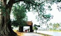 Características estructurales simbolizan la aldea tradicional vietnamita