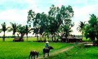 Estructura y organización del espacio vital de la aldea tradicional vietnamita