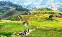 Lao Cai acoge Año Nacional de Turismo 2017