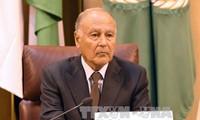 Liga Árabe insta a mayores acciones para resolver la crisis en Siria