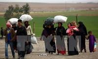 Prometen brindar 6 mil millones de dólares de asistencia a Siria en 2017