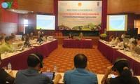 Debaten medidas para promover el desarrollo de minorias étnicas en Vietnam