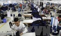 Prepara Vietnam normativa para evaluar el desarrollo de las empresas nacionales