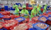 Vietnam factura ingresos multimillonarios por la exportación de productos acuáticos