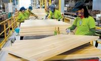 Halagueñas perspectivas para las exportaciones vietnamitas de madera y sus derivados