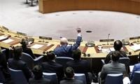 Consejo de Seguridad de la ONU prorroga por un año las sanciones contra Yemen