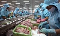 Señales positivas de exportación de productos agrosilvícolas y acuícolas de vietnam en 2018