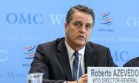 La OMC advierte que las disputas comerciales frenarán la economía mundial