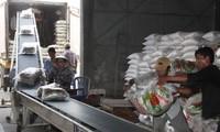 Vietnam puede exportar 6,5 millones de toneladas de arroz en 2018