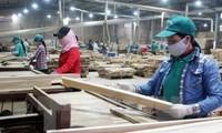 Sector silvícola de Vietnam apuesta por elevar a 9 mil millones de dólares sus ventas externas
