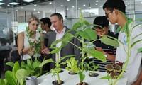 Ciudad centrovietnamita brinda apoyos a decenas de proyectos emprendedores