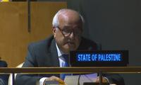 Palestina será presidente provisional del Grupo de países en vías de desarrollo de la ONU