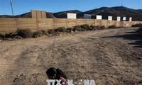 Trump amenaza con cerrar por vía militar la frontera con México