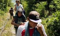 ONU pide respeto a la ley internacional en el trato a los migrantes centroamericanos