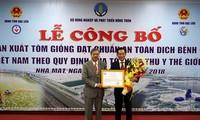 Productor de camarones de Vietnam cumple normas internacionales