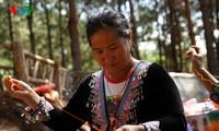 Moc Chau desarrolla la economía con el tejido de brocado tradicional