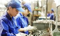 Empresas vietnamitas optimistas sobre la tendencia productiva y comercial en 2019