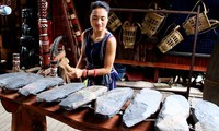 Dan da, un instrumento musical original de Vietnam
