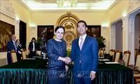 Vietnam y Rumania realizan consulta política