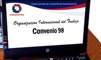 Organización Internacional del Trabajo elogia la aprobación de Vietnam del Convenio 98