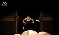 Circo vietnamita seduce al público australiano